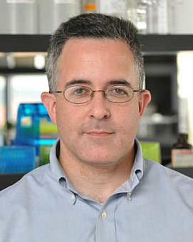 Mark D. Angelino, Senior Vice President, Pharmaceutical Sciences, Bluebird Bio