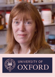 Dr Sarah Gilbert, Prof of Vaccinology, Jenner Institute, University of Oxford