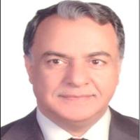 Mohamed Ismail Al Rabea