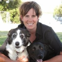 Dr Tracey Anderson, Director, Australian Veterinary Behaviour Services