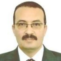Fekry Youssef Mohamed   Undersecretary For Mineral Resources   Ministry of Petroleum & Natural Resources, Egypt » speaking at The Mining Show