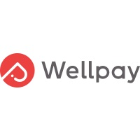 Wellpay Information Technology Co., Ltd at Seamless Southern Africa 2020