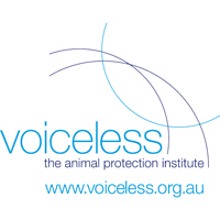 Voiceless, exhibiting at National FutureSchools Festival 2020