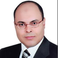 Ahmed Abdel-Rehim, Professor Of Energy, British University In Egypt