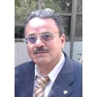 Tarek Hussein Ali