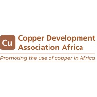 Copper Development Association at Power & Electricity World Africa 2020