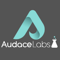 Audace Labs at Seamless Middle East 2020