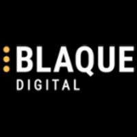 Blaque Digital at Tech in Gov 2020