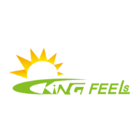 Xiamen Kingfeels Energy Technology Co at The Future Energy Show Vietnam 2021