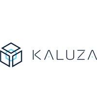 Kaluza at SPARK 2020