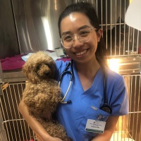 Suzanne Wu | Doctor Of Veterinary Medicine Student | University of Sydney » speaking at The Vet Expo