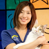 Momoko Ito | Primary Chemotherapy Veterinary Nurse | Brisbane Veterinary Specialist Centre » speaking at The Vet Expo