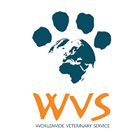 Worldwide Veterinary Service at The Vet Expo 2020