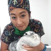 Alianna Munakata | Veterinary Technician | The unusual pet vets » speaking at The Vet Expo