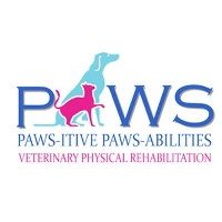 Paws-itive/Paws-abilities at The Vet Expo Africa 2020