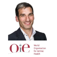 Dr Jorge Pinto Ferreira   Deputy Head of Department   World Organisation for Animal Health » speaking at Vaccine Europe