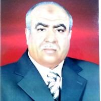 Hussien Rashidy