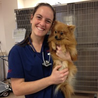 Suzanna Richards | BVSc (Hons) Veterinarian and current Masters Student | University of Melbourne » speaking at The VET Expo
