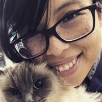 Keshuan Chow | Feline Medicine Specialist | University of Melbourne » speaking at The VET Expo