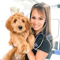 Dr Audrey Shen | Veterinarian | Aussie Mobile Vet » speaking at The VET Expo