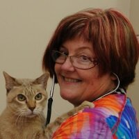 Dr Kim Kendall | Director | The Cat Palace » speaking at The VET Expo