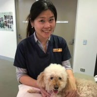 Dr Jane Yu | Resident in Small Animal Medicine | University of Sydney » speaking at The VET Expo