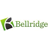 Bellridge Pty Ltd at Tech in Gov 2021