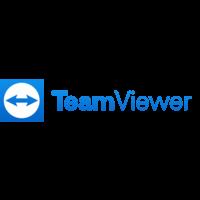 Teamviewer at Tech in Gov 2021