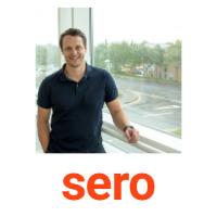 James Williams | MD | Sero » speaking at Solar & Storage Live