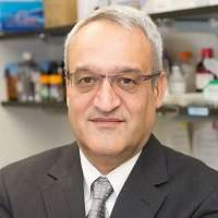 Javad Aman   President and CSO   IBT » speaking at World AMR Congress