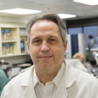 Neil Clancy   Associate Professor Of Medicine, Infectious Diseases Division, And Director, Mycology Program   University of Pittsburgh » speaking at World AMR Congress